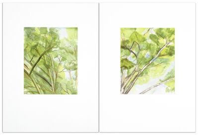 Sylvia Plimack Mangold, 'Pin Oak Diptych A & B', 2003