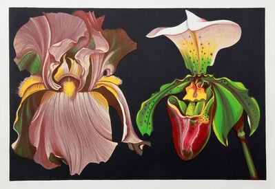 Lowell Nesbitt, 'Iris and Orchid', 1974