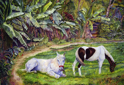 Emilio Torrez, 'Horses next to banana plantation', 2011