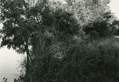 Frank Gohlke, 'Wichita River, near Scotland, Texas', 1995/2016