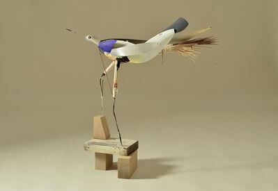 Robert Brady, 'Bird #001'