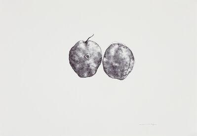 Cai Jin, 'Pear No. 2 梨子2', 2012