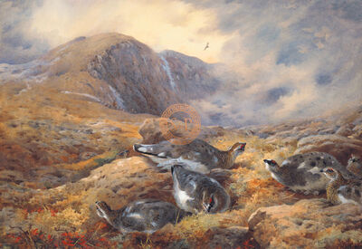 Sir Archibald Thorburn, FSZ, 'Danger Aloft', 21st century