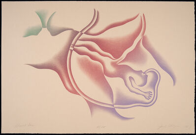 Judy Chicago, 'Almost Born', 1983
