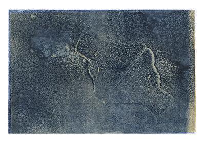 Aurore de La Morinerie, 'Plankton 6', 2015