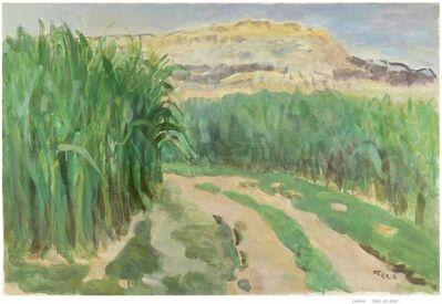 Yu Youhan, 'Yimeng Shan Nr. 13', 2005