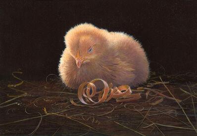 Timothy Barr, 'Single Chick'