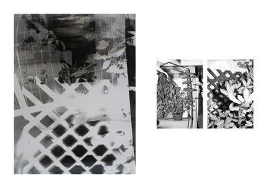 Bryan Graf, 'Shot/Reverse Shot, Studio Gardening at Night #1, July 26, 2020', 2020