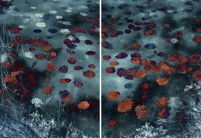 Santeri Tuori, 'Water Lilies 18', 2019