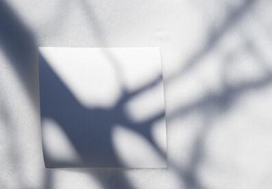 Brenda Biondo, 'Shadow Legacy no. 4', 2020