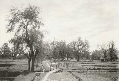 C. H. Harrison, 'Lola, Kashmir', 1890s