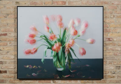 Michael Wesely, '1.3. - 7.3.2007', 2007