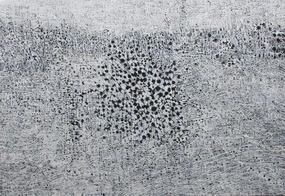 Shao-Yen CHEN, 'Grass on the Lake', 2019