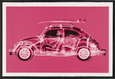 Nick Veasey, 'California Bug (Large Pink)', 2019