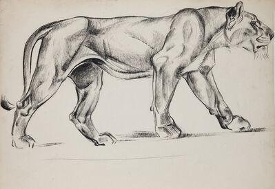 Walter Addison Estate, 'Big Cats: Lioness Stalking', 1940