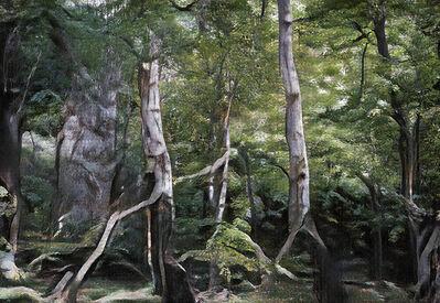 Andreas Greiner, 'Jungle_Memory_0100', 2020
