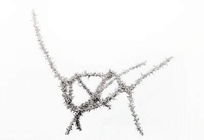 Aljoscha, 'Object #191', 2016