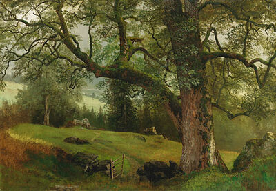 Albert Bierstadt, 'A Trail through the Trees'