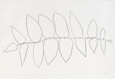 Ellsworth Kelly, 'Ailanthus Leaves I', 1966