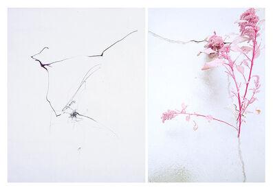 Sandi Haber Fifield, 'Untitled (LF16#130)', 2016