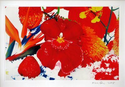 Marc Quinn, 'Six Moments of Sunrise (GT 15)', 2008