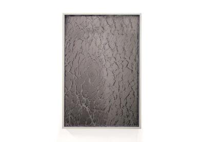 Bower, 'Water Mirrors', 2016