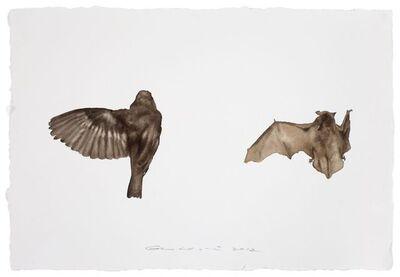 Guo Hongwei 郭鸿蔚, 'Bird No. 10 鸟10', 2012