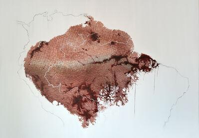 Luiz Escañuela, 'Carne Viva (Raw Flesh)', 2019