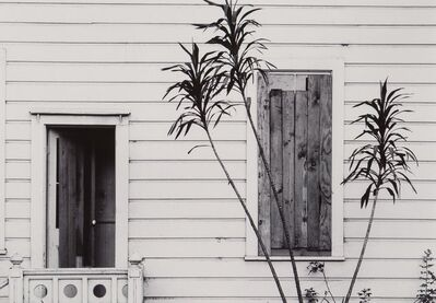 Pirkle Jones, 'Untitled (House and Plant)'
