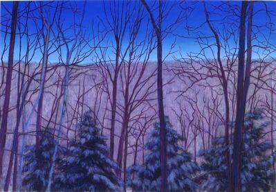 Jim Schantz, 'Winter Twilight Series #3'