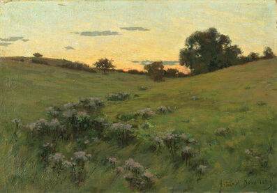 Arthur Wesley Dow, 'Flowering Field', 1889