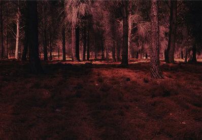 Raphael Y. Herman, 'Artificialis Revera', 2010