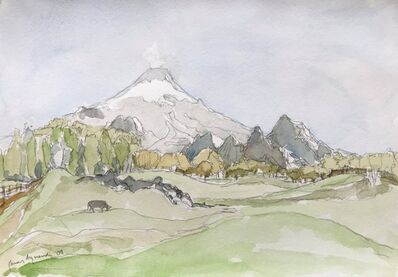 Javier Arizmendi, 'Villarrica, Chile', 2009