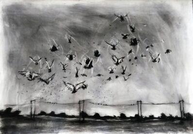 Themba Khumalo, 'Amajuba - Birds', 2017