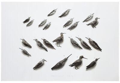 Guo Hongwei 郭鸿蔚, 'Bird No. 1', 2010