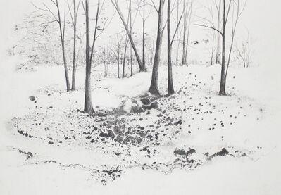 Marika Vicari, 'Alberi. Ombre sulla neve', 2019