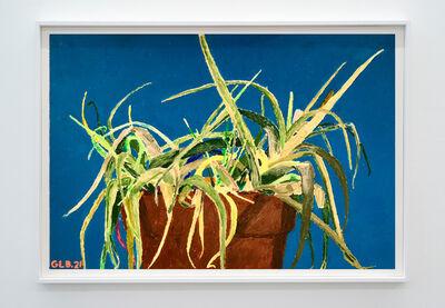 Gwendal Le Bec, 'Aloe 2', 2020