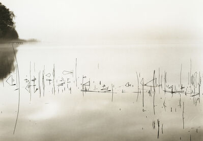 Roman Loranc, 'Sanscrit Tules', 2015