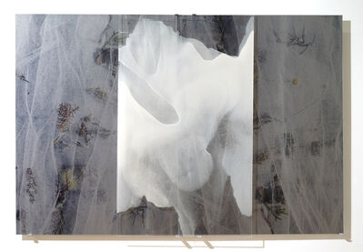 Janet Laurence, 'Skullbones Collections into Webs', 2016