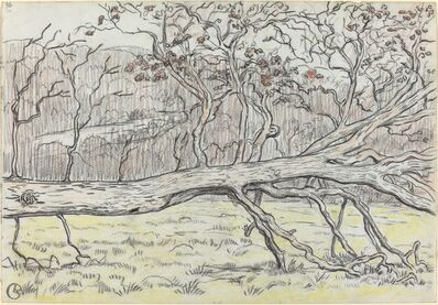 Georges Lacombe, 'Felled Tree, Normandy', 1898