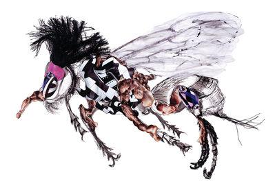Dominique Paul, 'Macropis Cuckoo Bee ', 2019