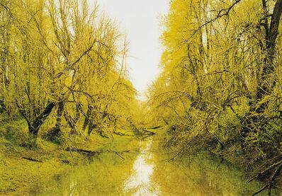 Elger Esser, 'Puget Island II', 2007