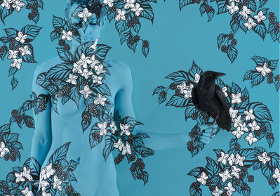 Emma Hack, 'Blackberries and Crow - Birds of a Feather', 2014