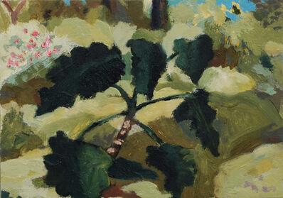 Nils Benson, 'Botanical Garden, UCLA', 2021