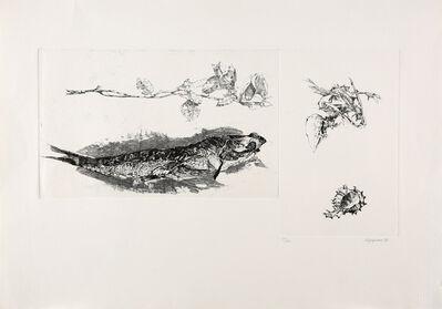 Renzo Vespignani, 'Studi', 1968