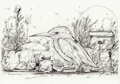 DZIA, 'A glimpse of a kingfisher', 2019