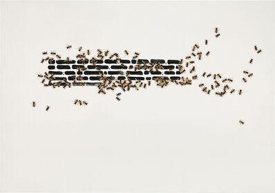 Emilio Isgrò, 'Credo e non credo', 2010