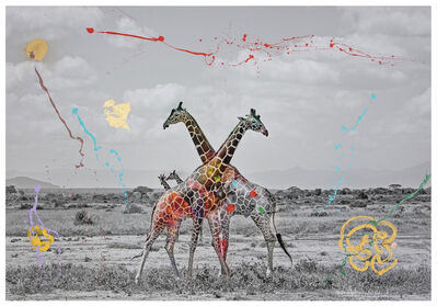 Arno Elias, 'Giraffe Duet', 2019
