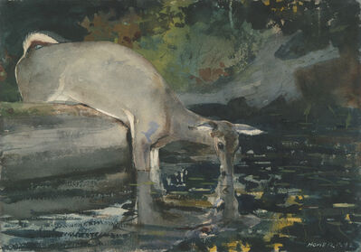 Winslow Homer, 'Deer Drinking', 1892