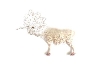 Miguel Ángel Fúnez, 'Gene targeting_Sheep', 2014
